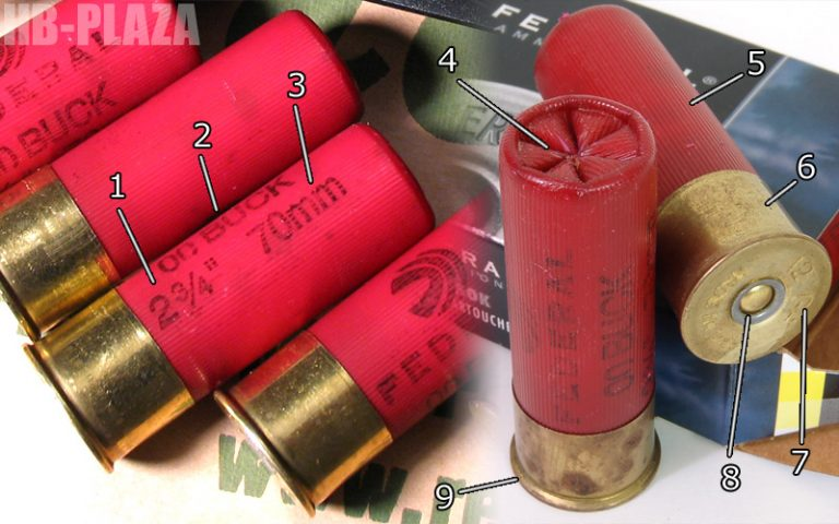 case-shotshell