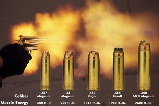 Photo via guns.com